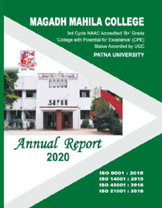 annual-reports-2020